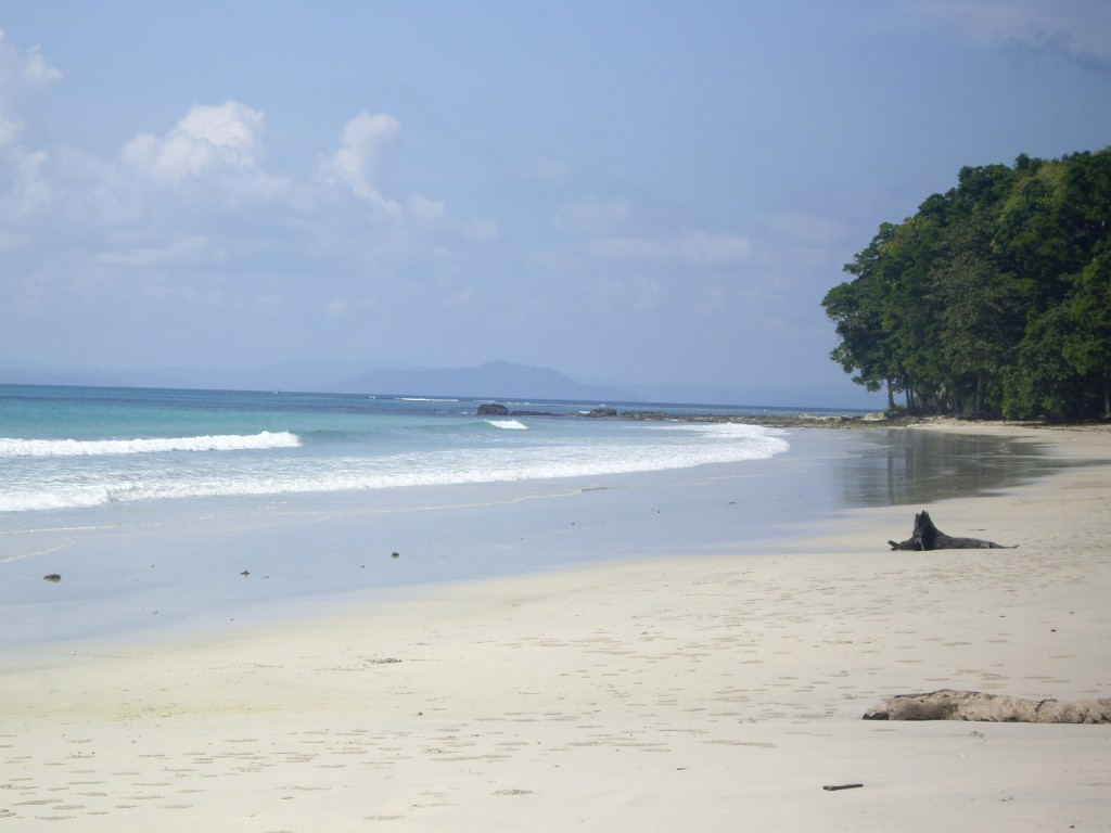 What a beach - Havelock Island, Andamans