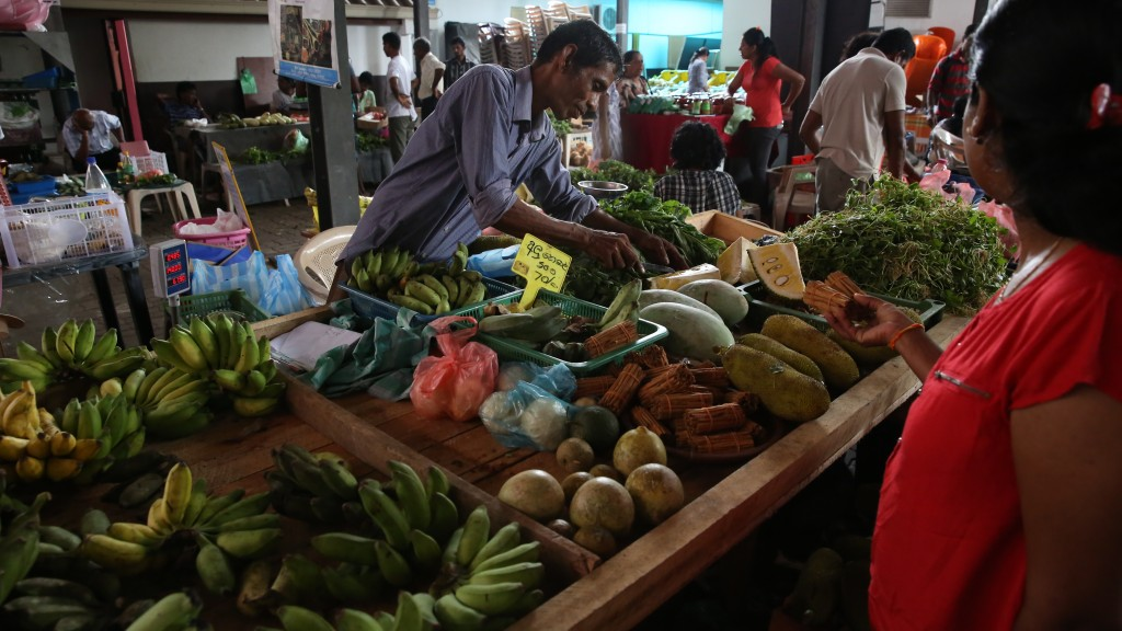 Exploring the markets in Colombo