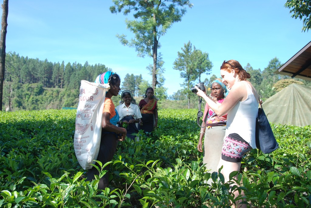 madukelleTea pickers