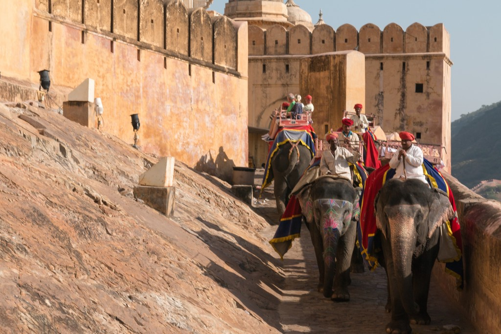 Amber Fort, Jaipur | India Unbound