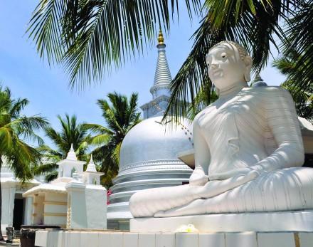 Back Roads of Sri Lanka