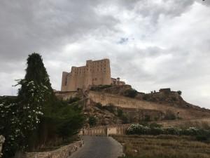 Bishnagar Fort